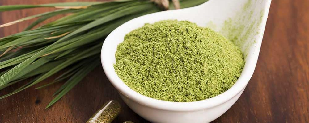 Best Kratom for Pain: Green Malay Kratom